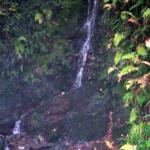 Petite Cascade à Glendalough