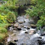 Photo de la rivière de Glendalough et ses galets