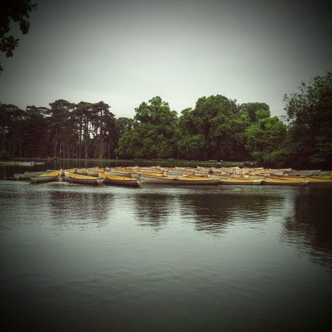 Le lac du bois de Boulogne