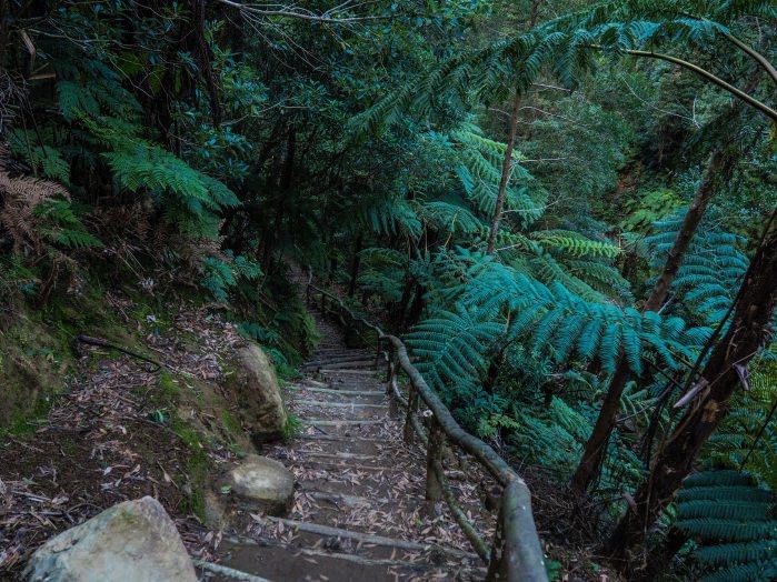 photo escaliers au parc naturel de Sao Miguel
