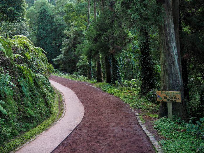 parc naturel de Caldeira Velha