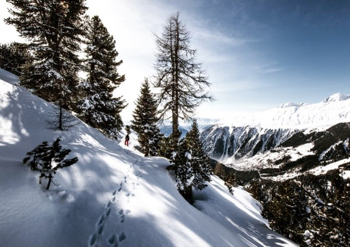 Sur un sentier de rando en raquettes à neige... Photo de Dino Reichmuth